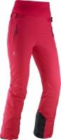 Pantaloni de schi Dama Salomon Catch Me Pant