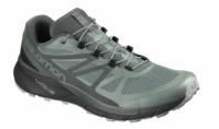 Pantofi Alergare Salomon Sense Ride Gore-Tex Invisible Fit Barbat