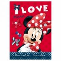 Carnetel A5 Pentru Stickere Minnie Mouse