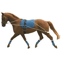 Kincade Lunging antrenament System