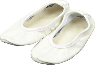 GIMNASTIC BALLGES ANTARES - piele, white
