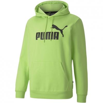 Bluza trening Puma men's ESS+ FL Big Logo green Sharp 855031 34