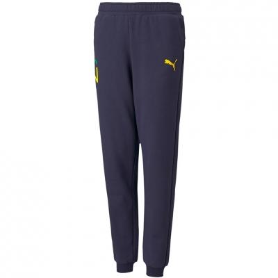 Pantalon Puma Neymar Jr Hero 's navy blue 605547 06 copil