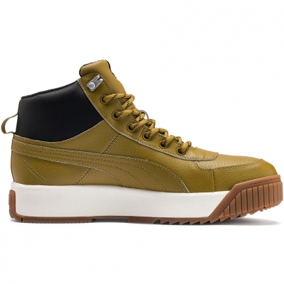 Pantof Puma Tarrenz SB Puretex Men's olive 370552 02